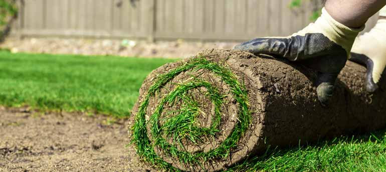 lawn installation - Landscaping Design And Lawn Fertilizer In Clarksville, TN